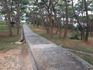 座喜味城跡の展望台へ行く道