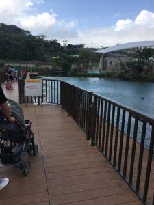 沖縄こどもの国の大きな池