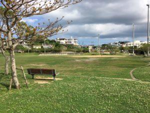 いこいの市民パークの運動場