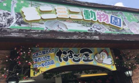 うるま市のミニミニ動物園