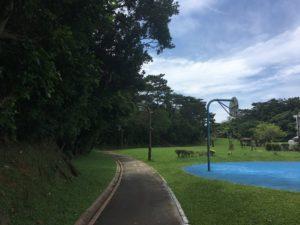 桃原公園の広場