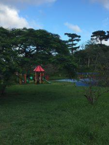 八重島公園は木陰が多い