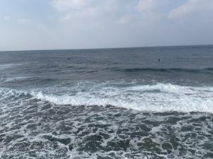 宮城海岸でサーフィン