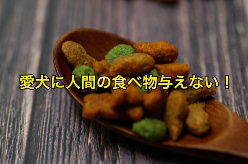 犬に残飯など人の食べ物を与えてはいけない