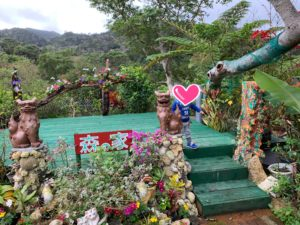 沖縄の森の家 沖縄そば