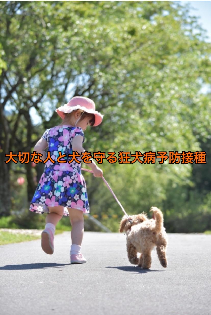 大切な人と愛犬を守る狂犬病ワクチン