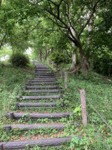 八重岳を散歩